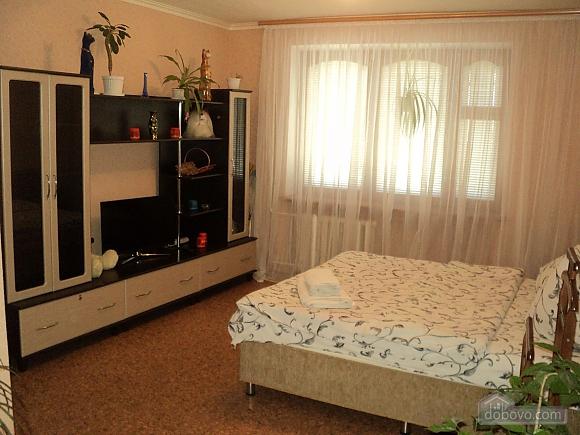 Однокомнатная квартира возле парка Александрия, 1-комнатная (95428), 001