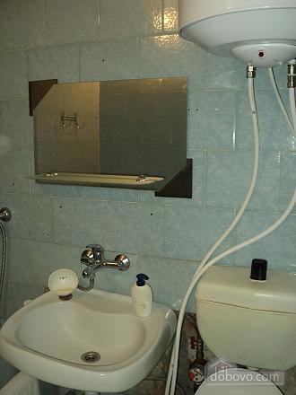 Однокомнатная квартира возле парка Александрия, 1-комнатная (95428), 008