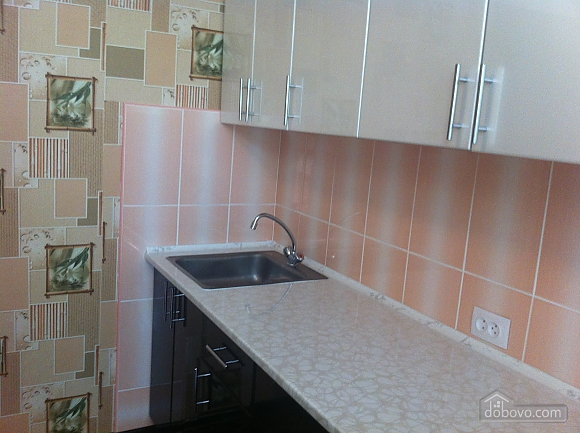 Cozy apartment in Vinnitsa, Studio (59564), 005