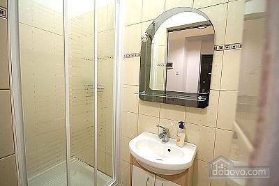 Cozy apartment in the center of Lviv, Studio (39407), 006