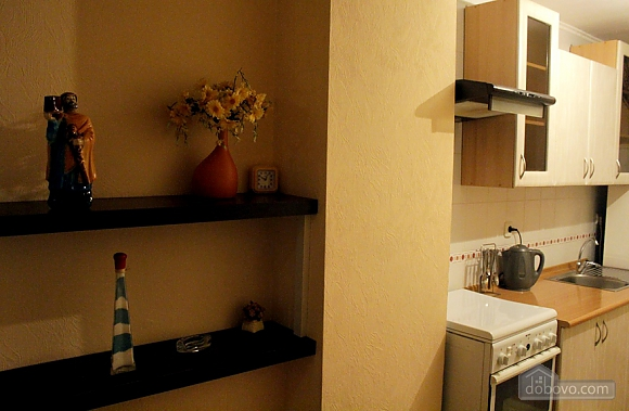 Super apartment in the central part of the city, Studio (16360), 010
