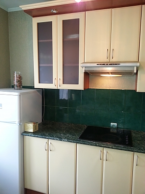 Apartment in 20 minutes from Boryspil airport, Studio, 001