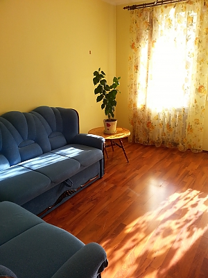 Apartment in 20 minutes from Boryspil airport, Studio, 003