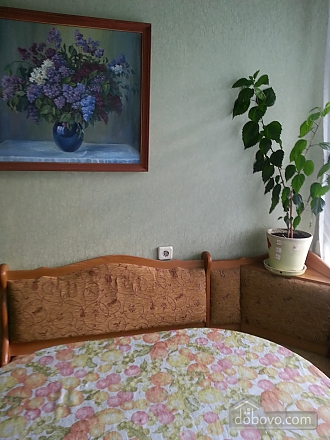 Apartment in 20 minutes from Boryspil airport, Studio (85994), 008
