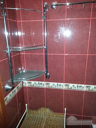 Apartment in 20 minutes from Boryspil airport, Studio (85994), 010