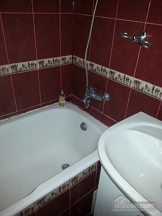 Apartment in 20 minutes from Boryspil airport, Studio (85994), 011