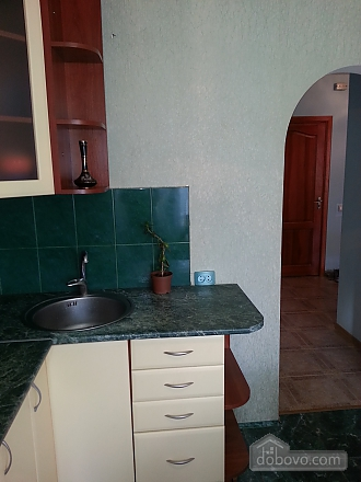 Apartment in 20 minutes from Boryspil airport, Studio (85994), 015