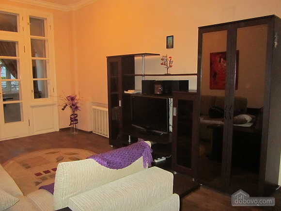 Apartment with beautiful balcony, Una Camera (56394), 005