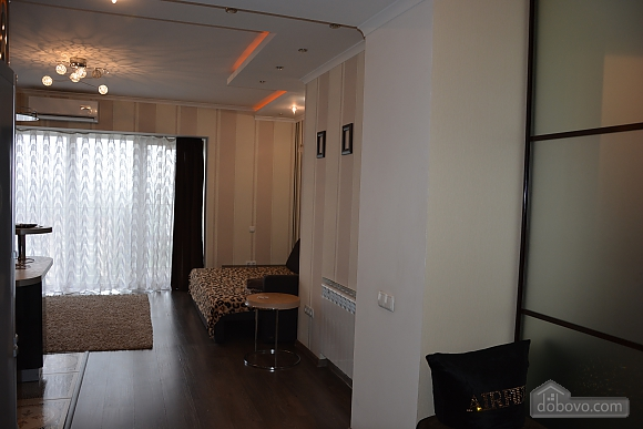 Studio apartment with the view of the city, Studio (81066), 010