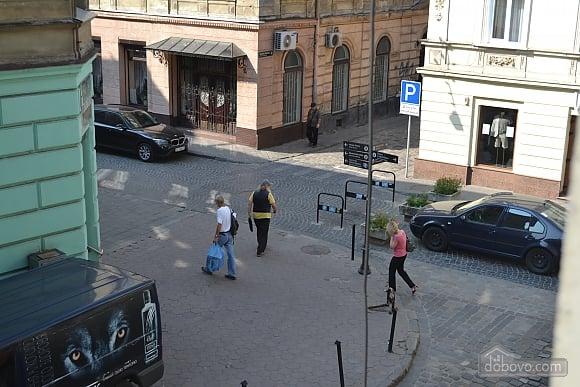 Квартира у центрі Львова, 1-кімнатна (26263), 012