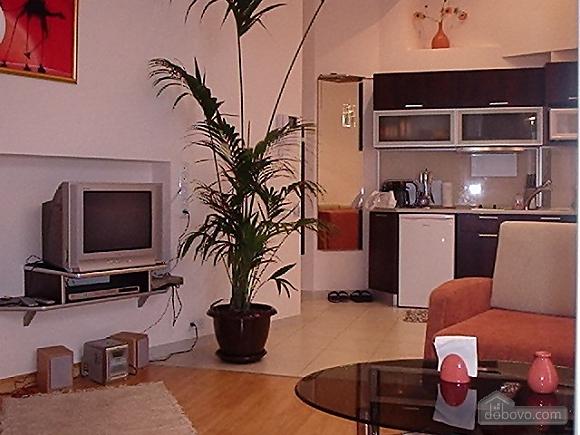One bedroom apartment on Mykhailivskyi (116), Un chambre (88117), 019
