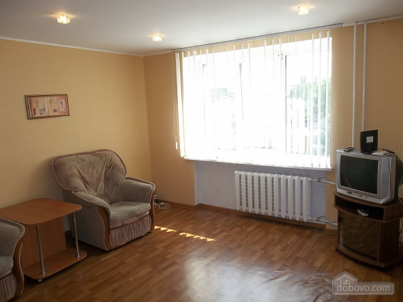 Spacious apartment in the quiet central part of the city, Studio (26476), 002