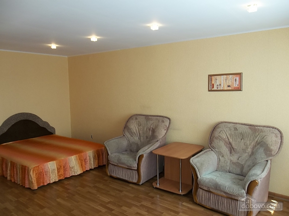 Spacious apartment in the quiet central part of the city, Monolocale (26476), 001