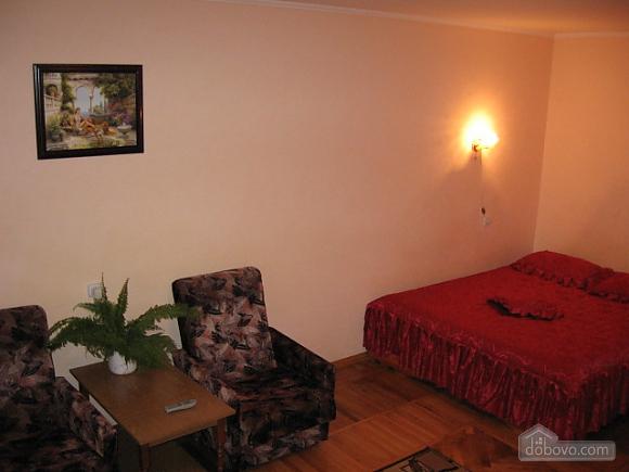 Apartment in the center, Monolocale (21527), 001