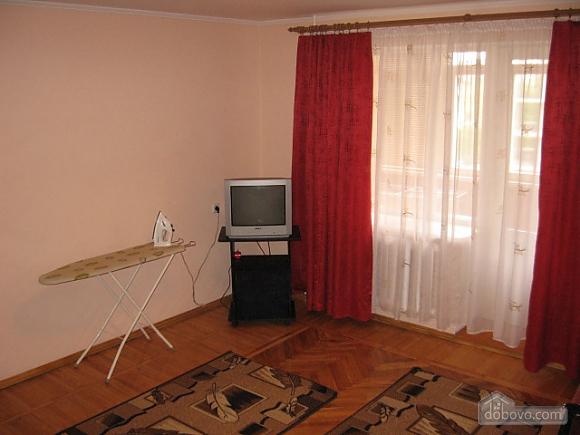 Apartment in the center, Monolocale (21527), 006