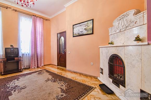 Nice apartment in the city center, Studio (13961), 009