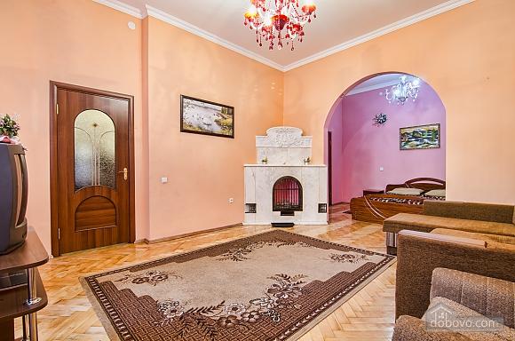 Nice apartment in the city center, Studio (13961), 010