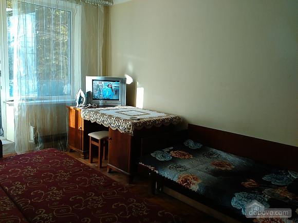 Apartment near to Studentska metro station, Studio (55772), 004