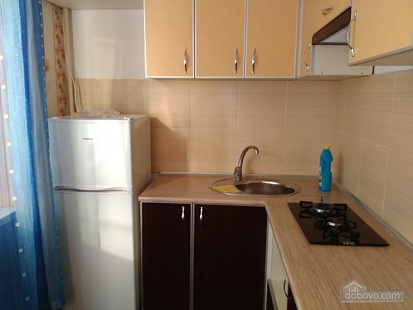 Apartment near to Studentska metro station, Studio (55772), 002
