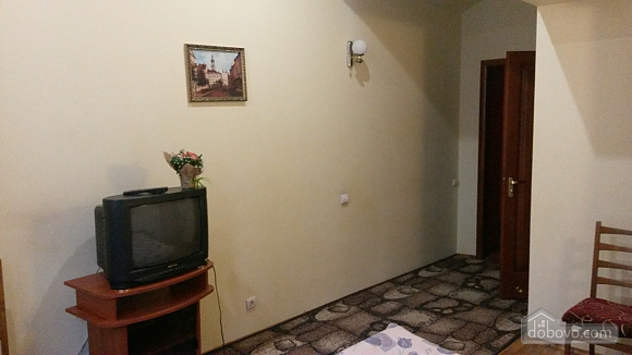 Suite in mini-hotel in the center of the city, Monolocale (12124), 010
