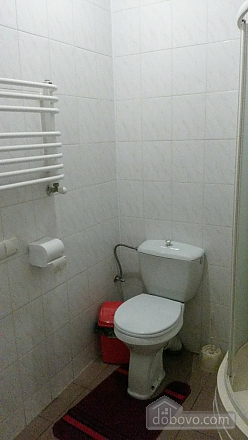 Suite in mini-hotel in the center of the city, Monolocale (12124), 011