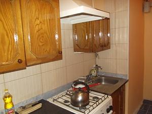 Apartment in Moldavanka area, Monolocale, 004