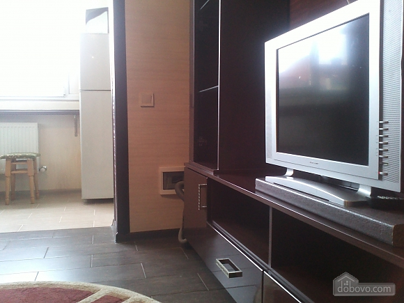 Apartment with renovation, One Bedroom (56380), 016