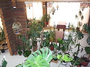 Wooden cottage with cozy suite, Studio, 009