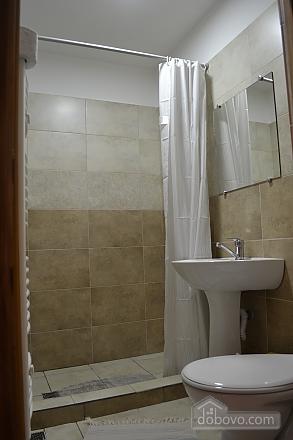 Apartment in front of Borzhava, Three Bedroom (38953), 005