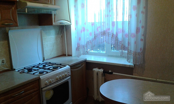 Apartment near to Horkoho park, Studio (57434), 003