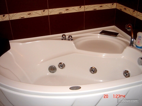 Excellent apartment with jacuzzi in the center of Kiev, One Bedroom (69117), 009