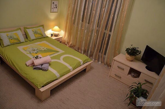 Pretty apartment in the center of Lviv, Zweizimmerwohnung (99043), 001