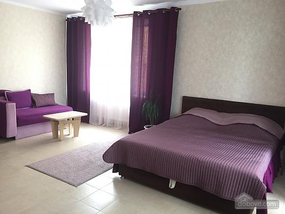 Квартира на Червоній площі, 1-кімнатна (34908), 001