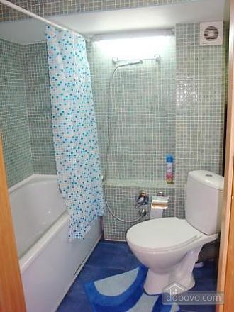 Квартира недалеко от Крещатика, 2х-комнатная (20376), 009