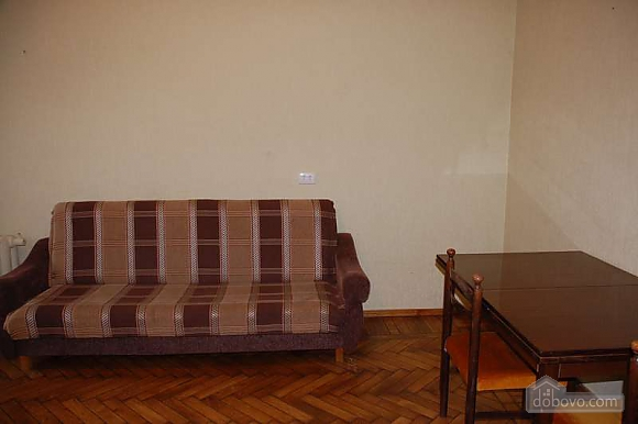 Apartment in the centre after the renovation, Un chambre (79100), 005