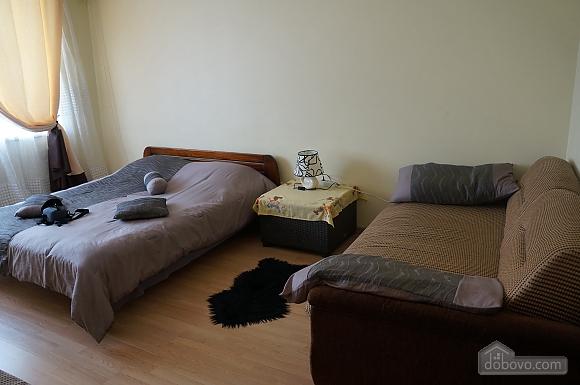 Spacious apartment near Pozniaky metro station, Studio (38509), 008