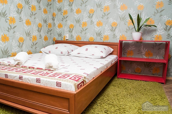 Cozy apartment near to Chernigivska station, Studio (58559), 001
