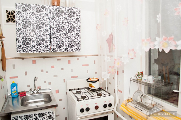 Cozy apartment near to Chernigivska station, Studio (58559), 007