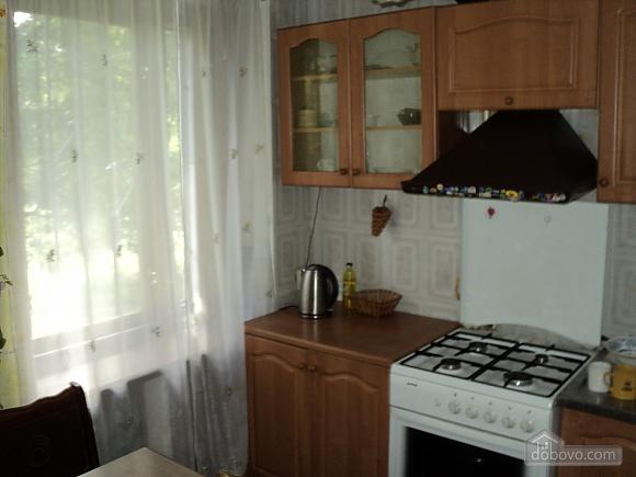 Apartment in the center, Un chambre (80065), 004