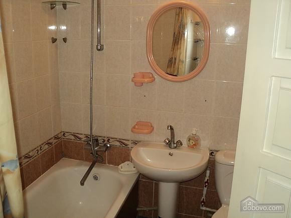 Apartment in the center, Un chambre (80065), 005