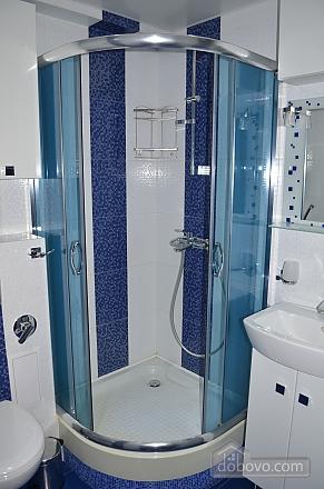 Luxury apartment with renovation, Zweizimmerwohnung (22515), 013