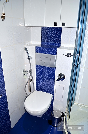 Luxury apartment with renovation, Zweizimmerwohnung (22515), 014
