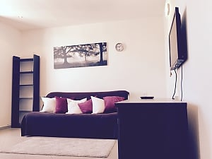 Apartment in a new building, Un chambre, 002