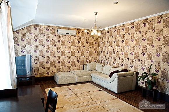 Spacious apartment, Una Camera (41374), 001