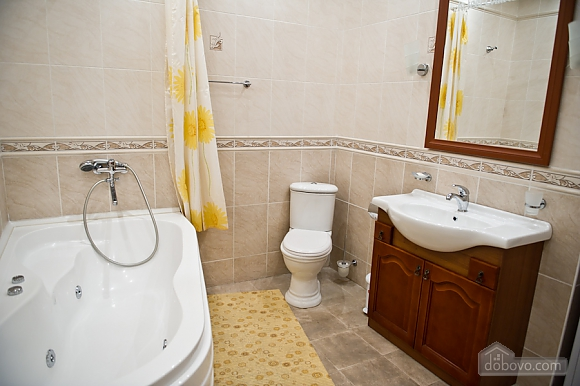 Apartment on Varlaam, Un chambre (69051), 010