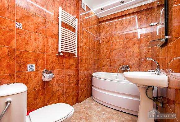 Rent apartment in Chisinau, Monolocale (55822), 006
