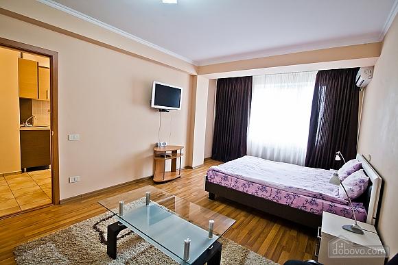 Квартира в центре города, 1-комнатная (21616), 001