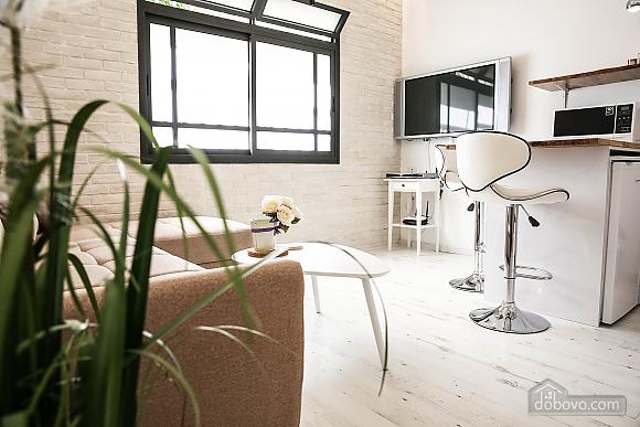 Stylish apartment in a prestigious location, Un chambre (44952), 010