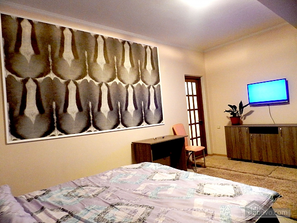Apartments on Izmail Street, Monolocale (67478), 010