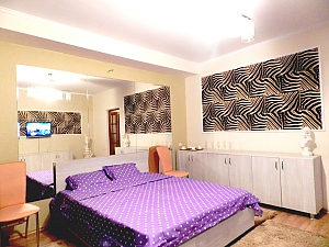 Good accommodation in Chisinau, Monolocale, 001